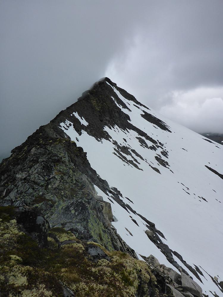Den meget pene søraust-ryggen på 1291-toppen. Skodda lurer i hælane på meg.