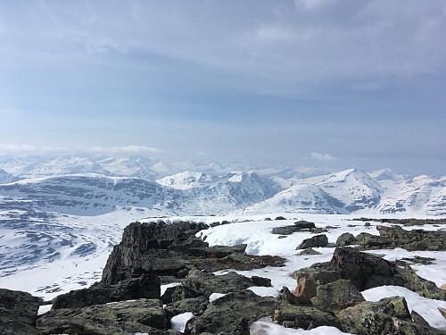 Salen et al, og Rognnebba. Høge Innerdalsfjell i bakgrunnen?