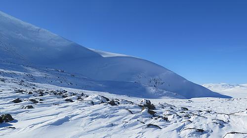 Fin flanke å renne ned frå Skarvedalseggen 1961 moh