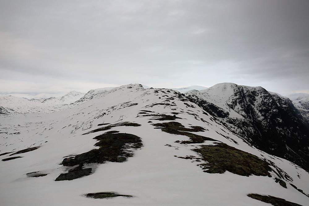 Lite med snø på toppane! Ifrå Kleivafjellet 1057 mot Skafonnfjellet 1162 og Høgenipa 1307 moh