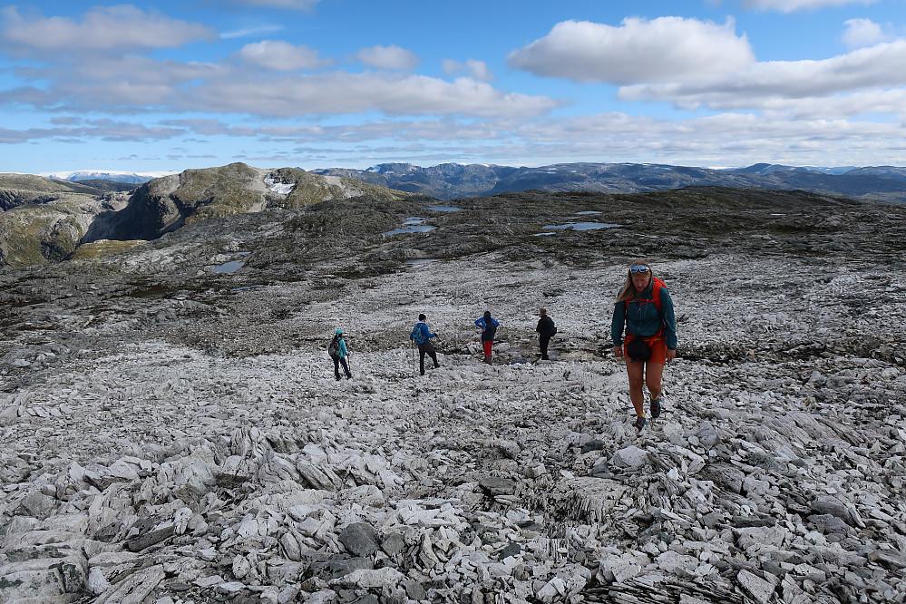 Det eine fjellet Breidalsegga 1234 var det brått så mange på tur. Ellers traff vi ingen andre på vår ferd!