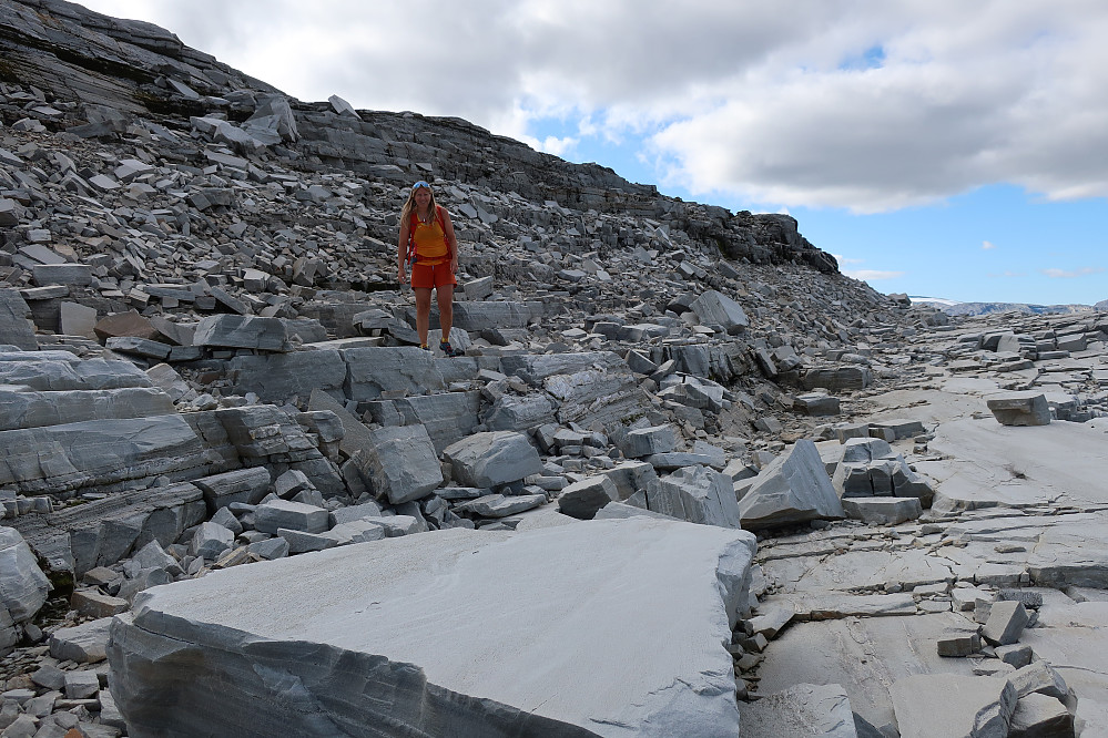 Skulle gjerne hatt nokre av desse steinblokkene på tomta mi oppe ved Jølstravatnet :)