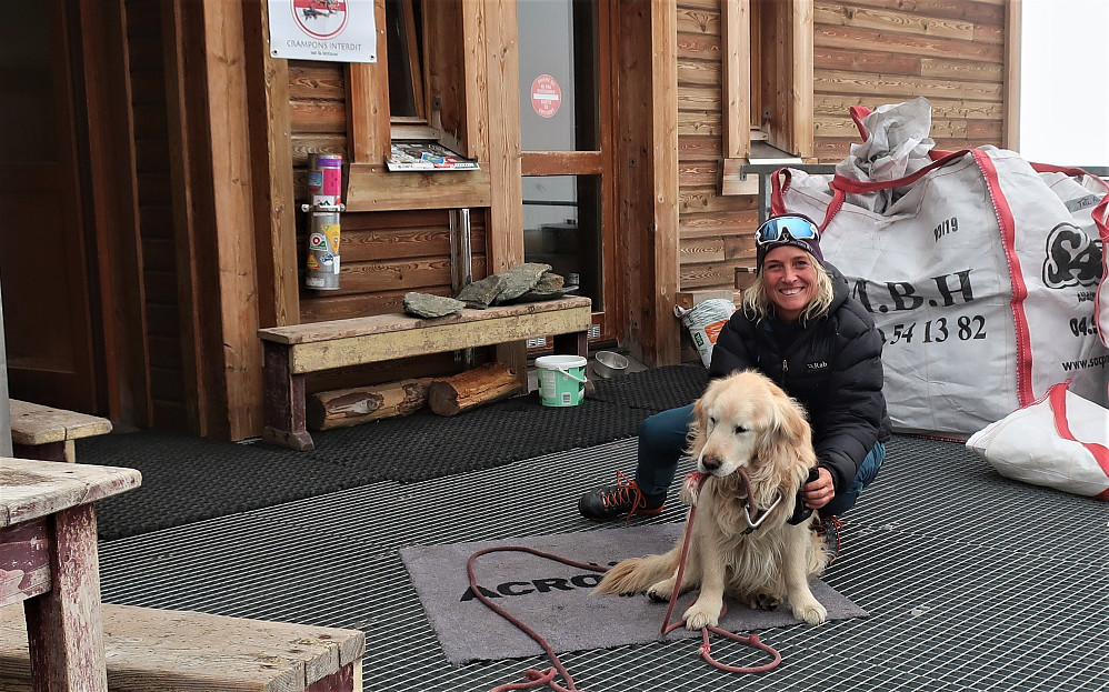 Ein trivelig venn å treffe i høgda på Refuge De Tete Rousse 3167 m