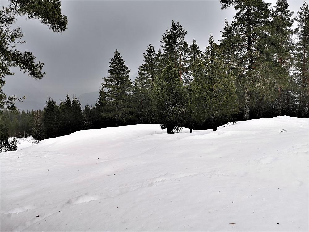 Bra med snø på Mostøylen endå! Utsikta til Tindefjellet var ikkje tilgjengelig dette øyeblikket!