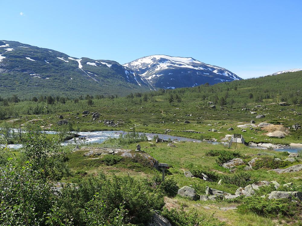 P ved Mysubytta og Surtbyttdalen