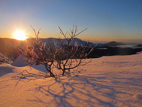 Frå Storfjellet 950 moh (Haram) Vinter idyll :)