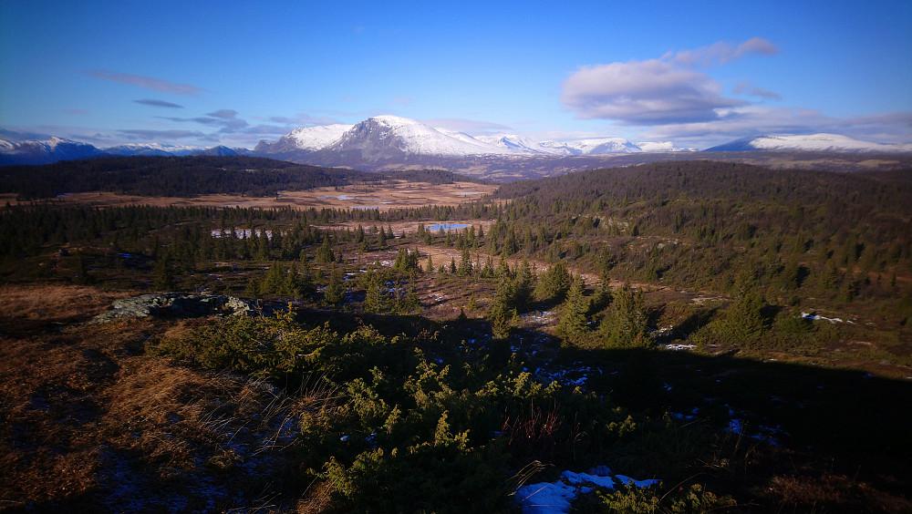Utsikt fra Store Skinhovda mot Skogshorn og andre flotte fjell