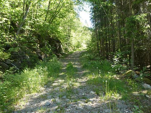 Fulgte traktorveien oppover til et kryss hvor veien tok skarpt av til venstre.