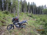 Kjørte så langt jeg kunne mot toppen på en gammel skogsbilvei