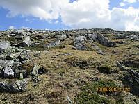 Lett terreng å gå opp mot Strålsjøhøi