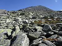 Mye grov steinur gjorde det rimelig greit å gå oppover fjellsia