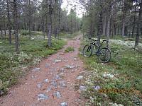 Fin sti i starten gjorde at sykkelen ble med et stykke opp i lia, så ville returen bli lettere