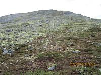 Det ble litt trim opp fjellsia mot Vesle Elgvasshøe