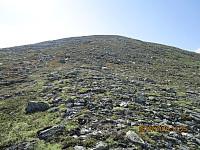 Langt, men lett å gå opp mot toppen av Sandomshøe