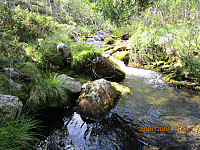 Kjølig og godt også nede i denne bekkedalen, men ikke nok vann til å bade