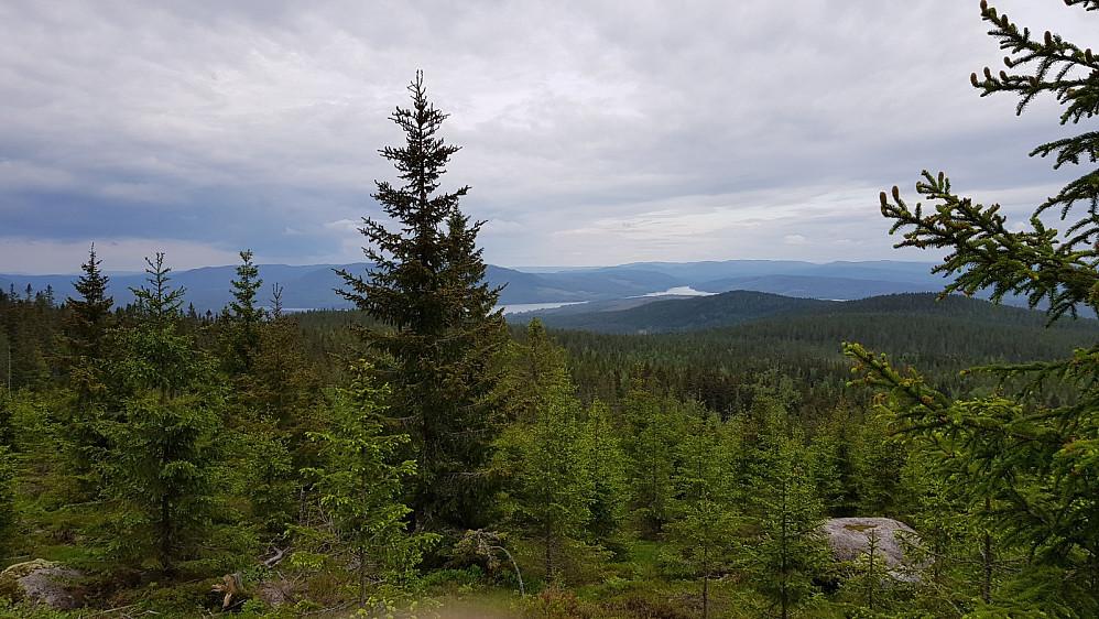 Utsikt mot Sverige