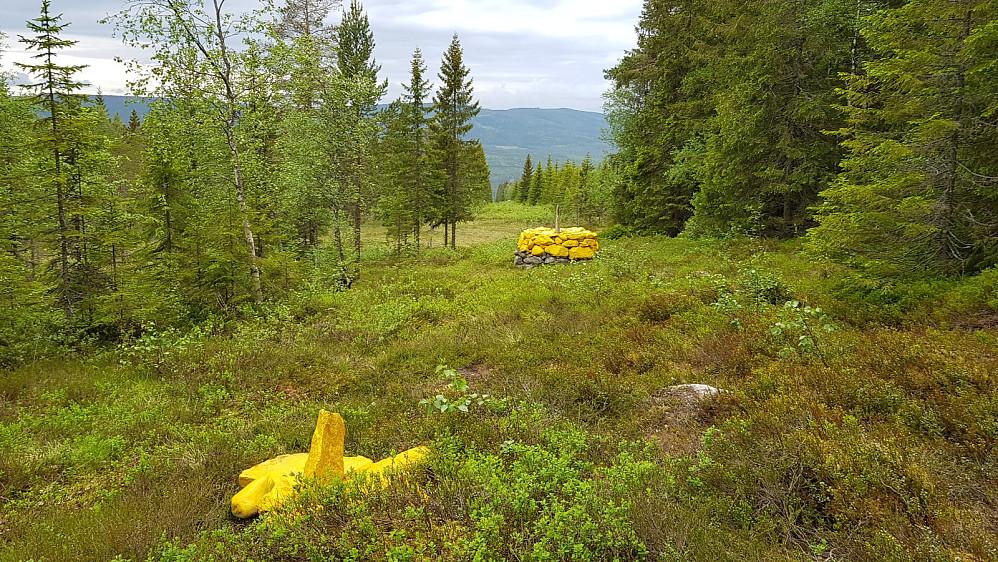 Jeg måtte bare ta en sving innom Sverige når jeg var så nære grensa. Grensa var markert med gulmalte steiner