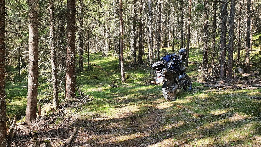 Her var det slutt på veien og motorsykkelen ble parkert i den svale skogen. Varmen hadde ikke helt satt inn enda.