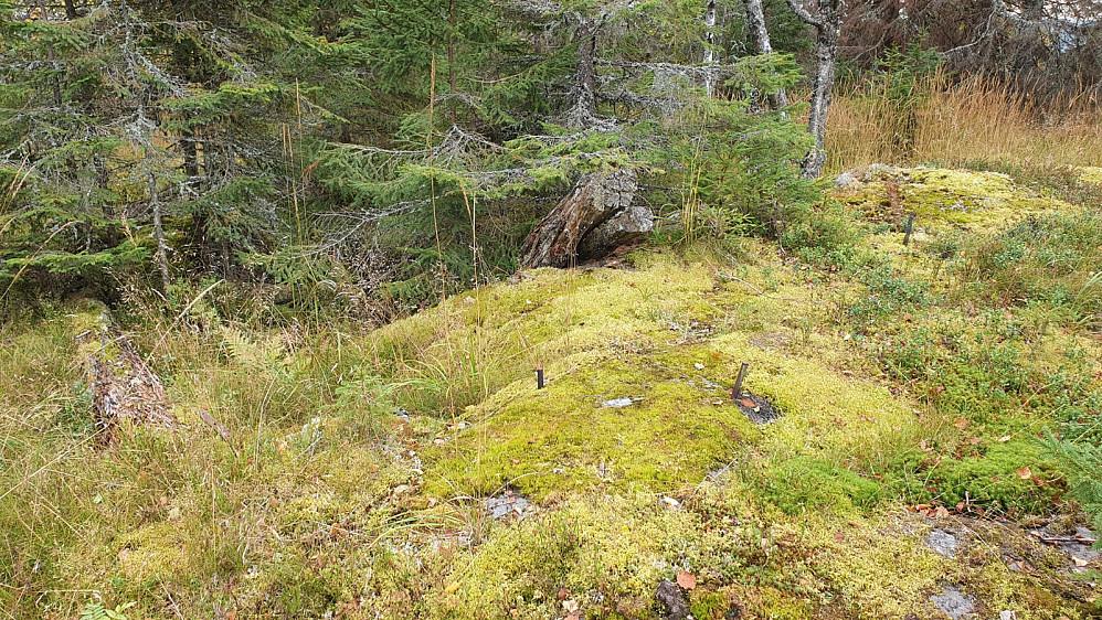 Bolter i berget og rester av et gammelt tårn på toppen