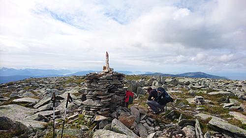 Toppen av Storfjellet, 950 moh.