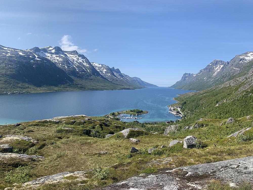 Finfin ersfjord