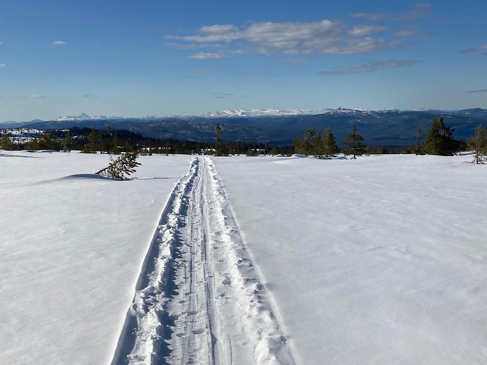 Størstedelen av turen gikk i snøscooterløype.