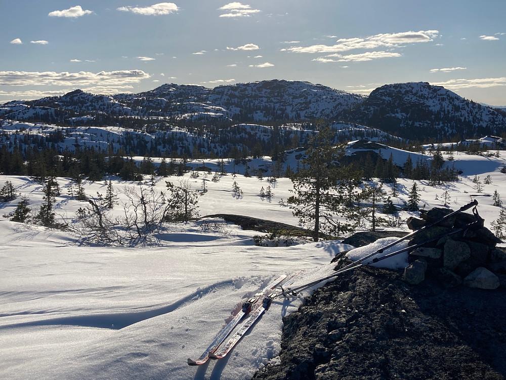 Toppunktet på Evjuseterfjellet.