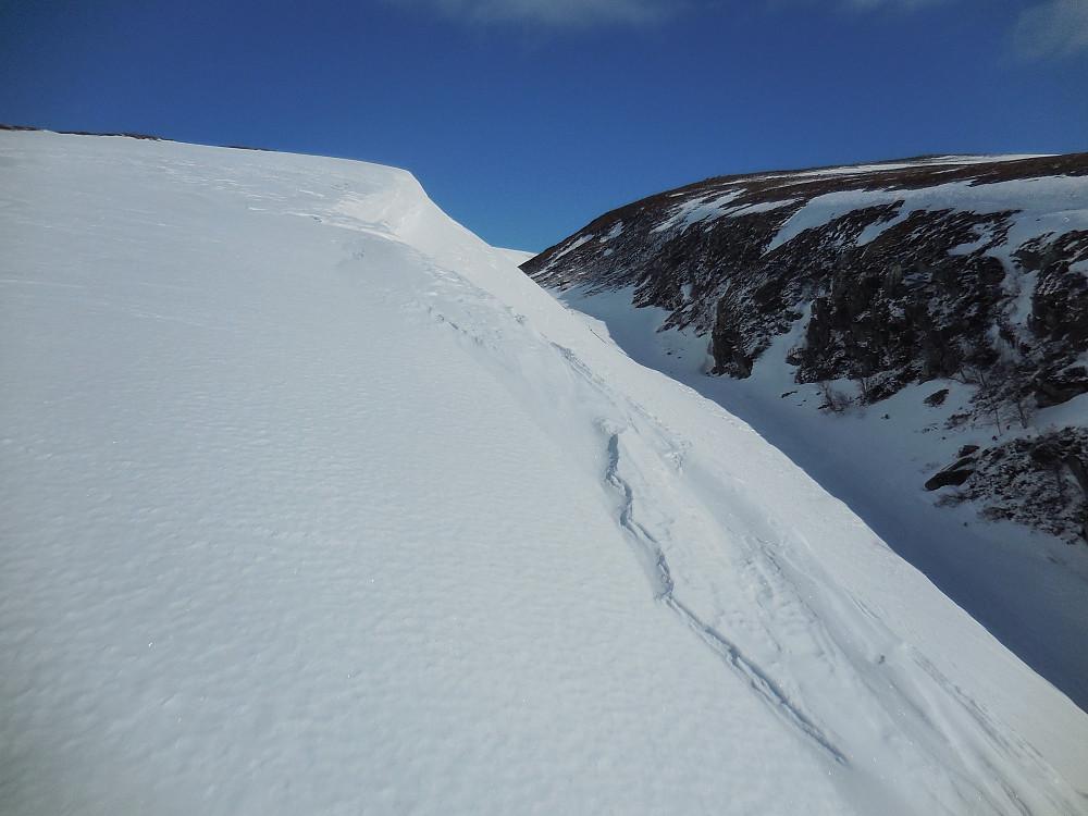 Langs kanten av Søre Gravåe. Fjellrypa spilte ivrig på barrabbene på motsatt side.