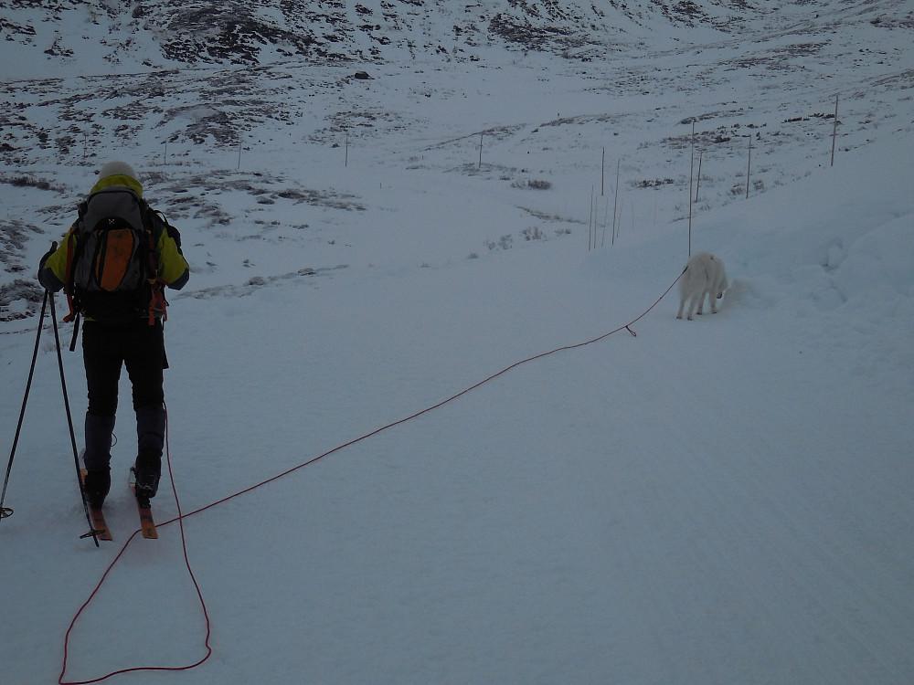 Lite snø men godt føre på det vesle som var. Turid og Anton etter Fv 252 langs Tyin.