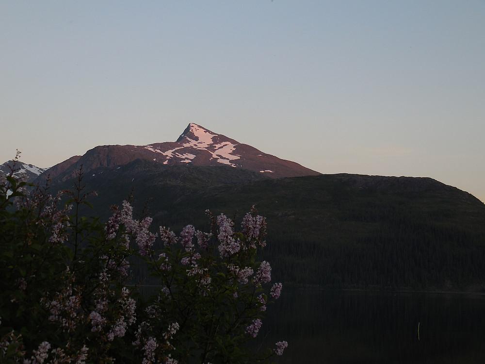 Lukttinden, et flott fjell! Her sett fra Osen Camping ved Luktvatnet.