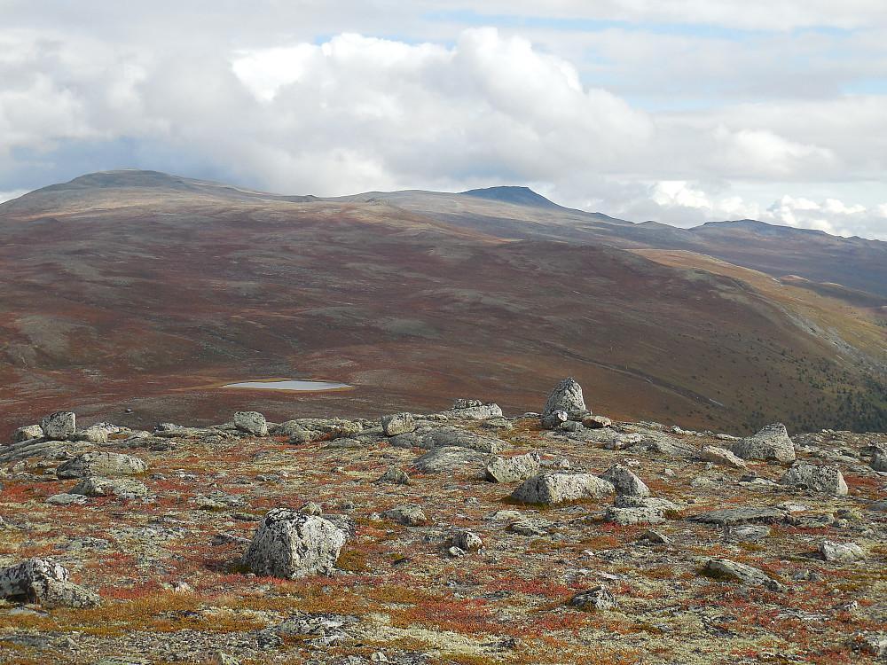 Utsikt mot Skaihøe. Vatnet midt på bildet er Søndre Veslteppingi.