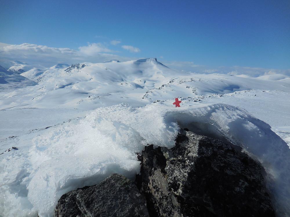 Karihøa, 1782 moh. med Karitinden bak.