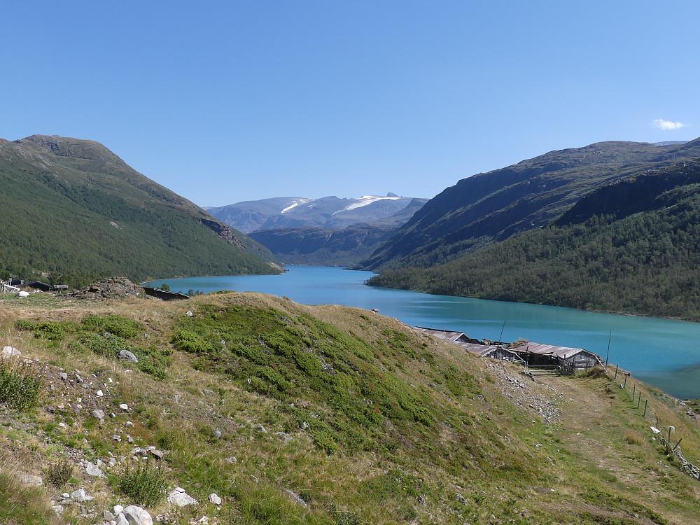 Fra Høydalsæter og østover Høydalsvatnet. Bak anes fra venstre: Storgrovhøer, Vesle Galdhøpiggen, Galdhøpiggen, Dumhøe og Skardstinden med Nåla.