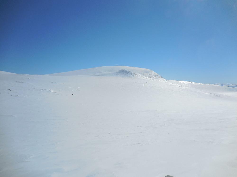 Gråhø 1945. I forgrunnen ses den vesle toppen Nord for Gråhøe, 1841 moh. som vi også avla et besøk.