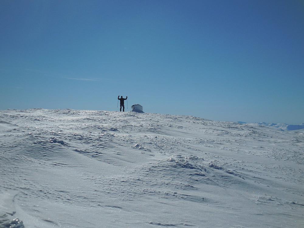 Endelig på toppen av Gråhø, 1945 moh. og siste pf-100toppen i Lesja er et faktum.