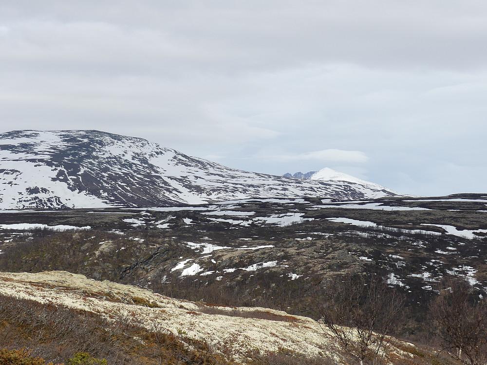 Til høyre for Kolla dukker Snøhetta opp.