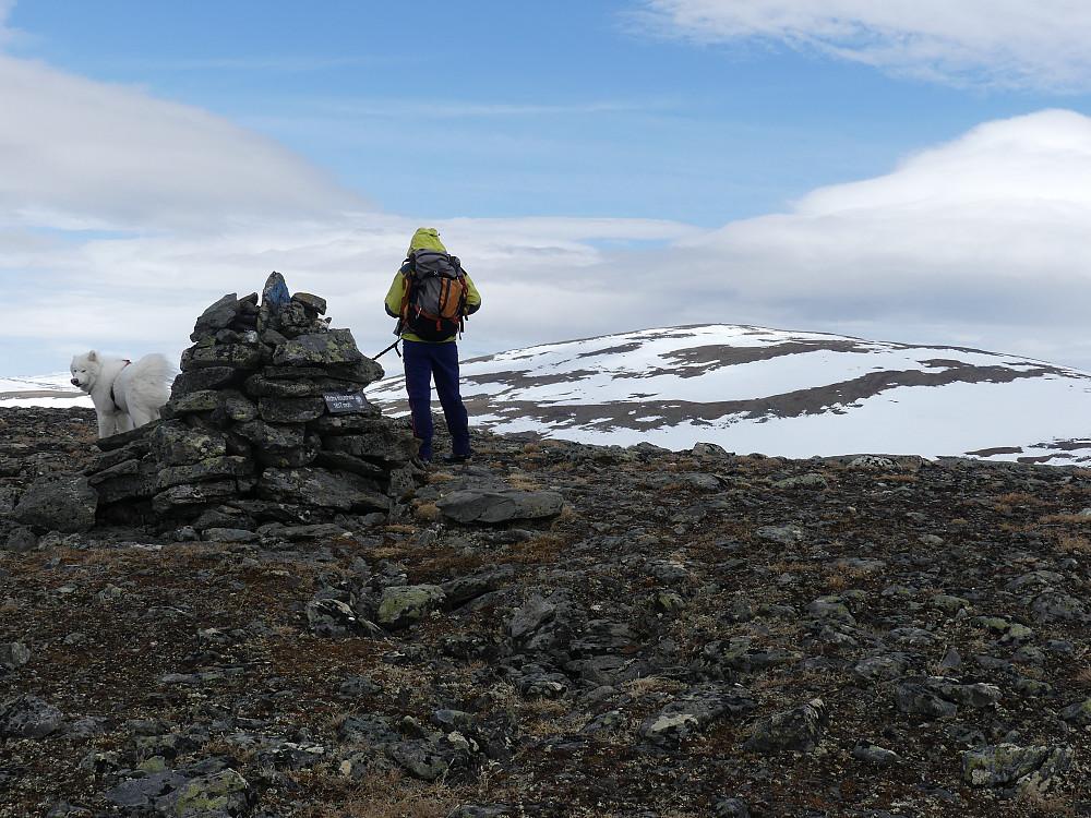 På Midtre Knutshøa, 1617 moh.