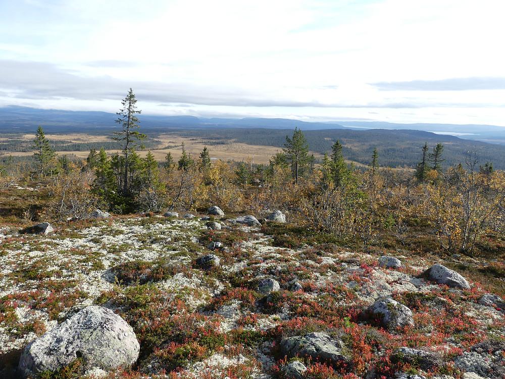 Fra Måsåknappen med utsikt over Storbekkjølen.