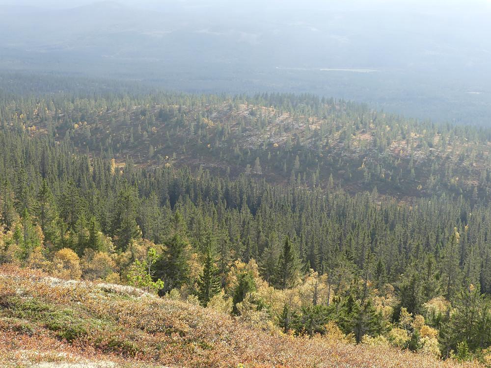 Volkampen sett fra øverst i Turtroa naturreservat.