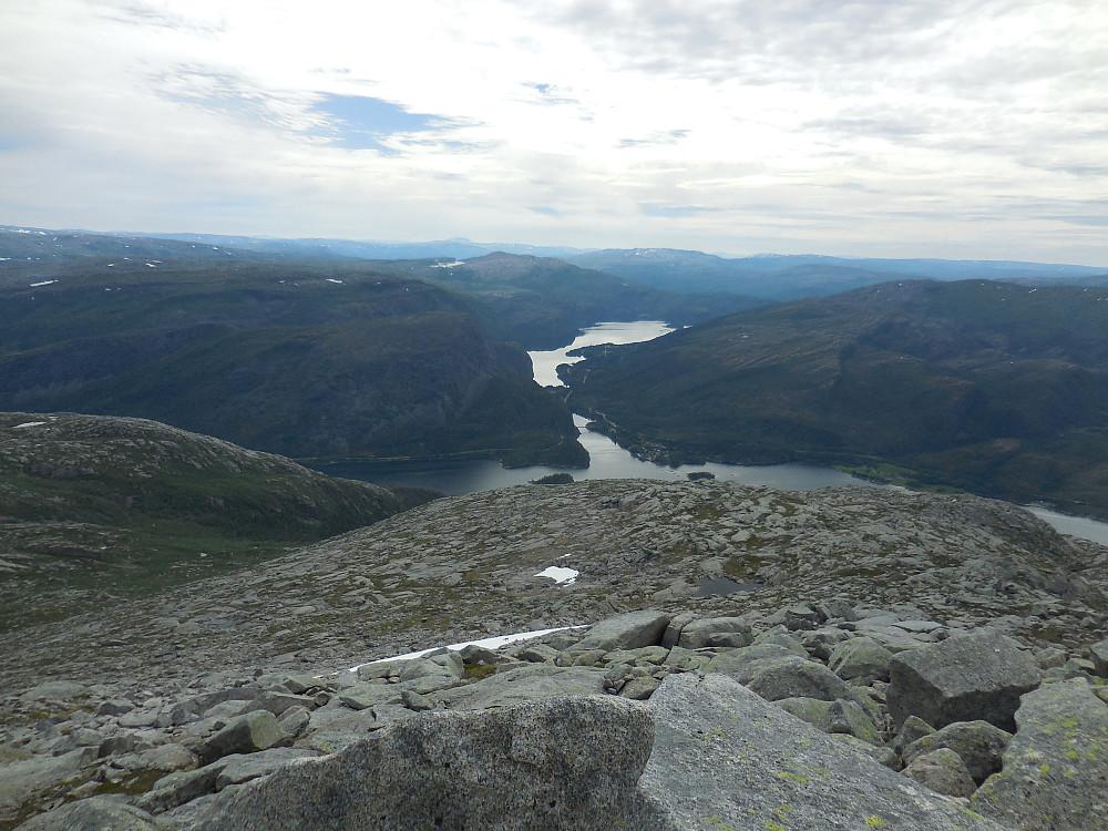 Fjordarmen Kollbotnet i sør.