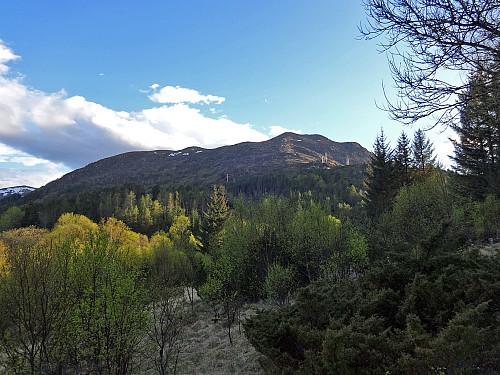 Øyrahornet sett fra veien mot Sandvikskaret