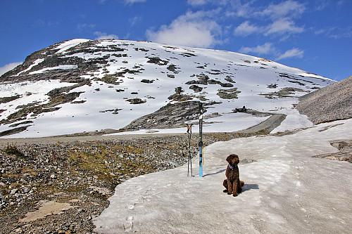 Karma - klar for skitur på Vivakulen