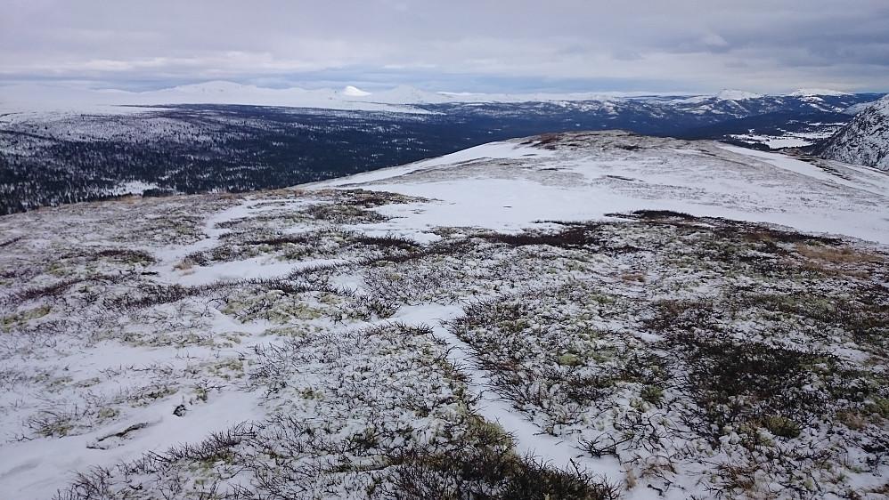 Utsikt sør-østover, nedover Frydalen, fra Flakkshøa. Det er vel Muen på Ringebufjellet vi ser som en tydelig hvit og lys trekant langt i det fjerne.