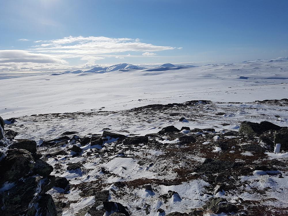 Vestre og Østre Falkfangervola ses bak en mørk skygge rett i mot Fongen sentralt i bildet.