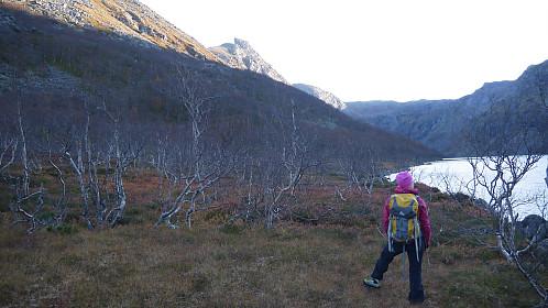 Trollfjordvatnet