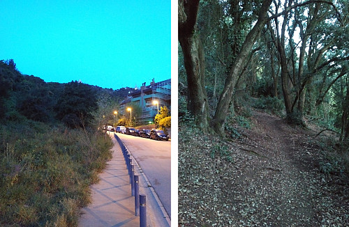 The first part of the run went along the streets of Barcelona (left image), whereas the next part went up through the forests of a very steep hillside.