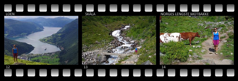 Bilder fra turen ned igjen fra Skåla. 12) Utsikt over Loenbukta. 13) Brua over Fosdøla. 14) Vi møtte noen krøtter både på vei opp og på vei ned igjen.