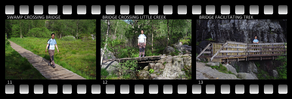 Image #11: Bridge crossing a large swamp on the way to the Pulpit Rock. Image #12: A bridge crossing a little creek. Image #13: At this spot a bridge has been made just to facilitate the trek.