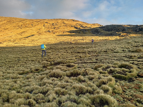 #41: Making our way towards the summit of Kidis Yared in beautiful morning light.