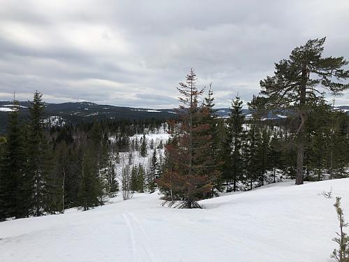 Utsikt nordvestover vest for toppen
